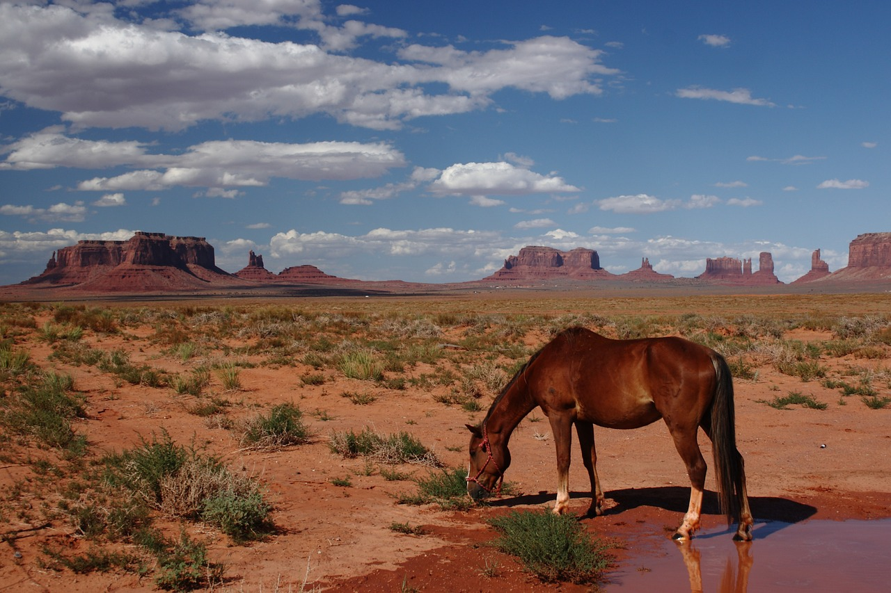 monument-valley-native-american-tours-Redstonr
